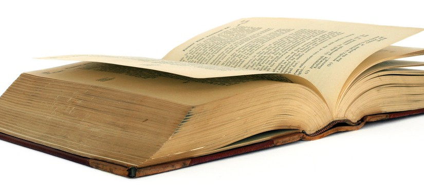 Buchmenschen und ihr Medienkonsum – Sachbuch oder Roman? [Teil IV]